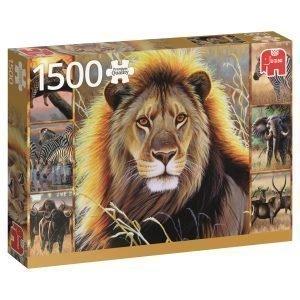Jumbo African Beauty 1500 Palaa