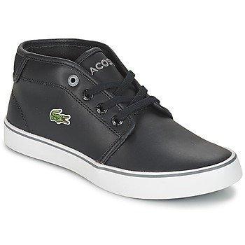 Lacoste Ampthill 316 2 matalavartiset kengät