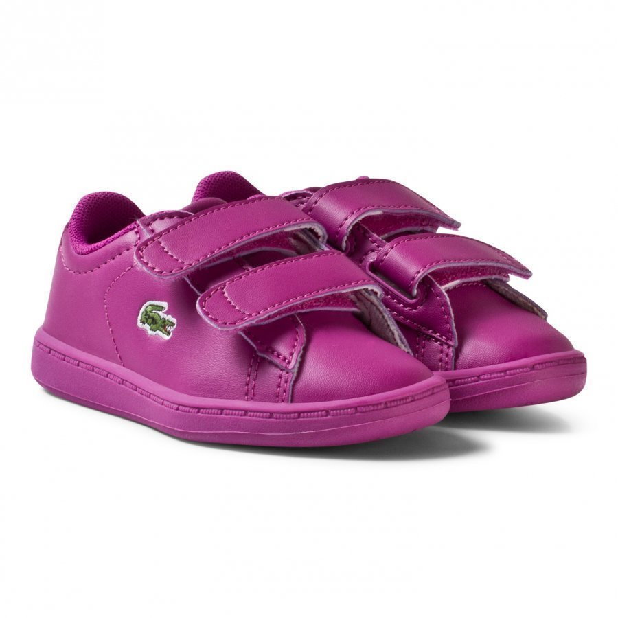 Lacoste Carnaby Evo 317 5 Spi Trainers Pink Lenkkarit