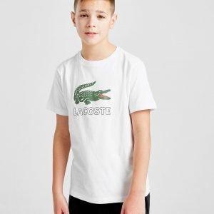 Lacoste Croc T-Paita Valkoinen