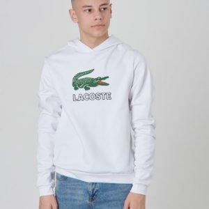 Lacoste Hoodie Huppari Valkoinen