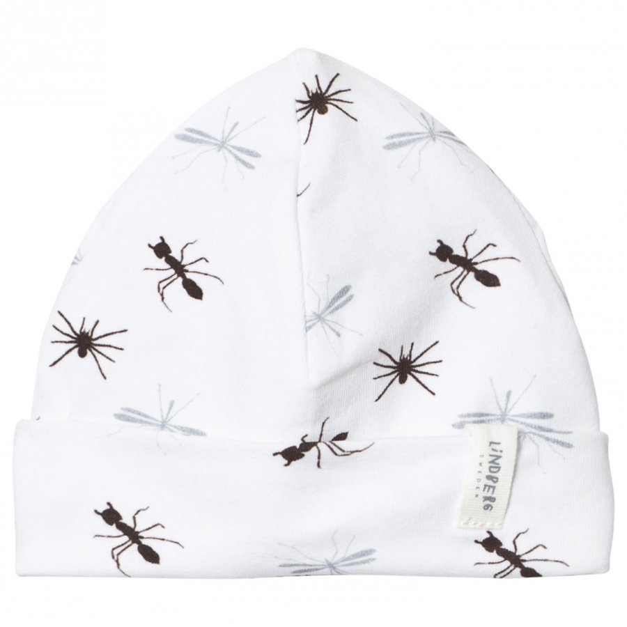 Lindberg Malm Hat Insect Pipo