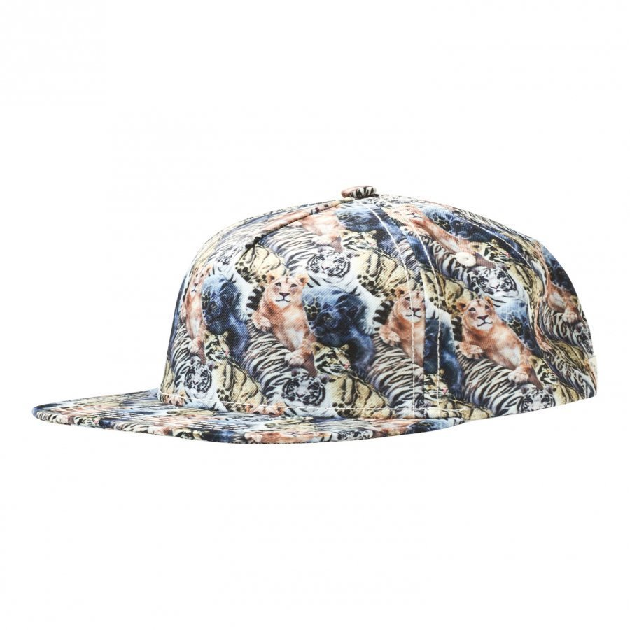 Molo Big Shadow Jr Cap Wild Cats Swim Lippis