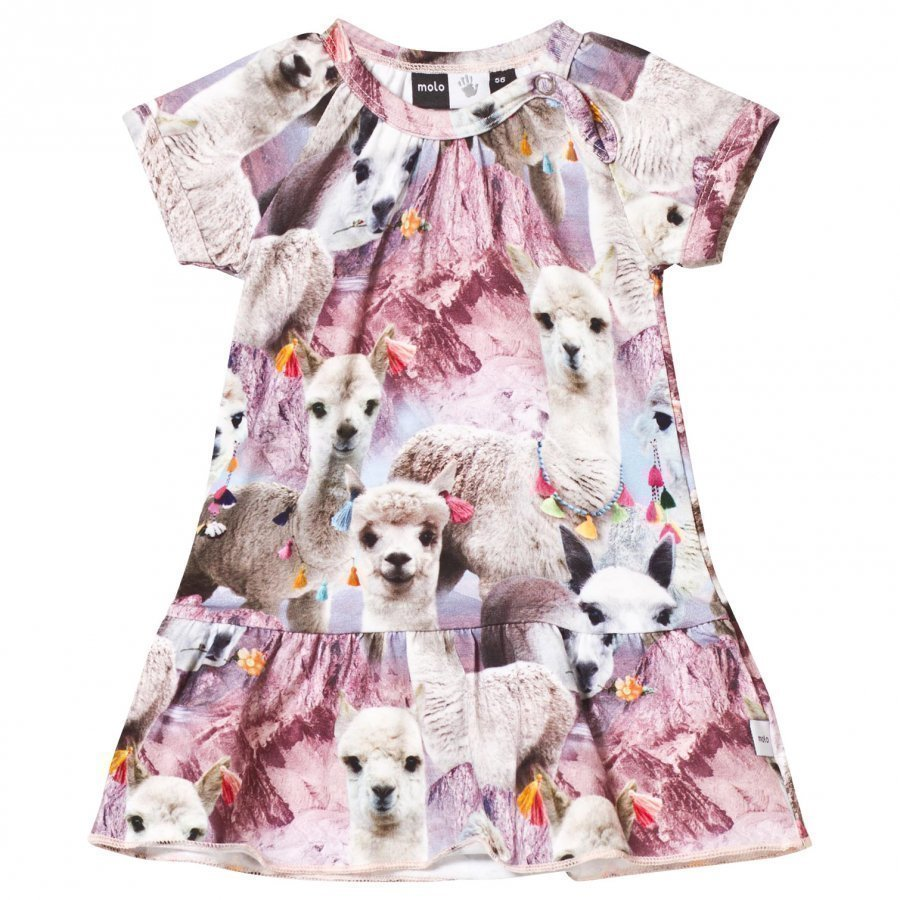 Molo Cibbe Dress Lovely Llama Mekko