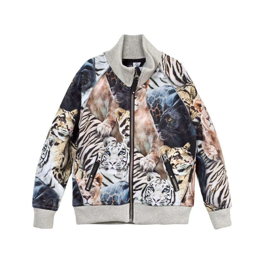 Molo Hestie Soft Shell Jacket Wild Cats Kuoritakki