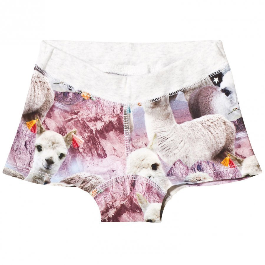 Molo Joanna Boy Shorts Lovely Llama Pikkuhousut