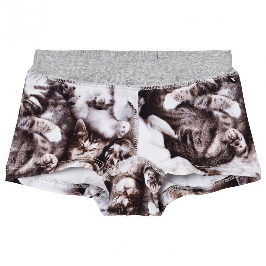 Molo Joanna Boy Shorts Miauuu Alushousut