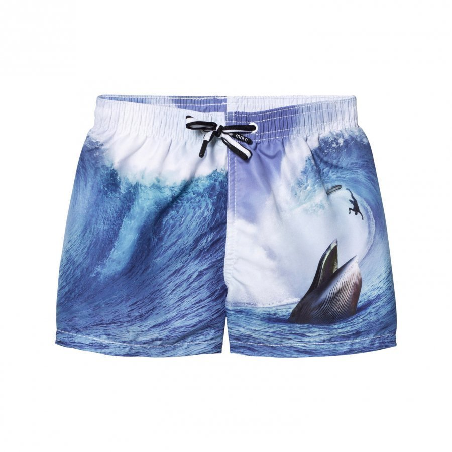 Molo Niko Swimming Shorts Surfer Meets Whale Uimashortsit