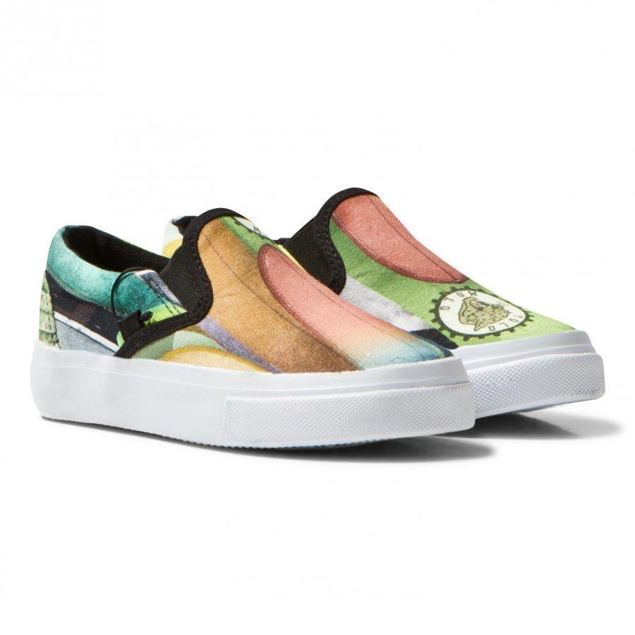 Molo Zeus Sneakers Surfboards Kangaskengät