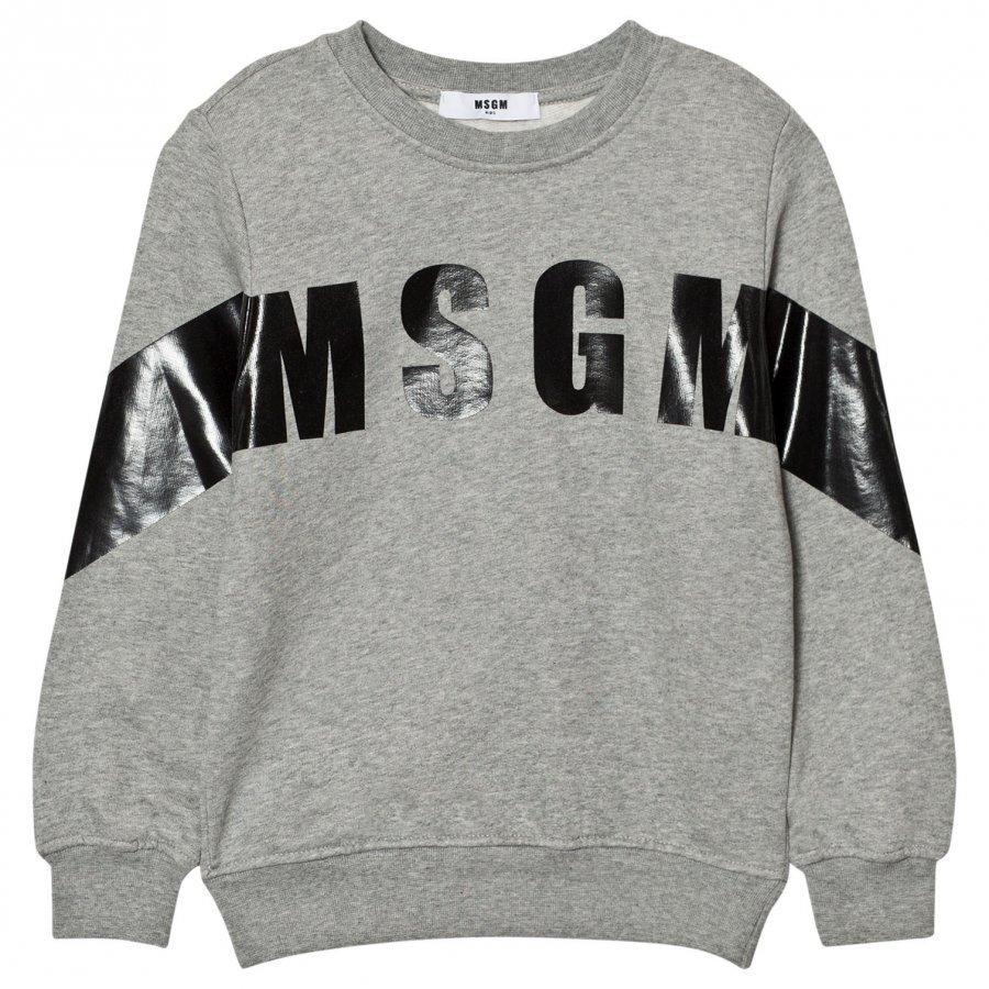 Msgm Grey Branded Stripe Sweatshirt Oloasun Paita