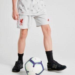 New Balance Liverpool Fc 2018/19 Kolmannet Shortsit Harmaa