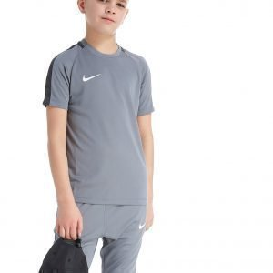 Nike Academy T-Paita Harmaa