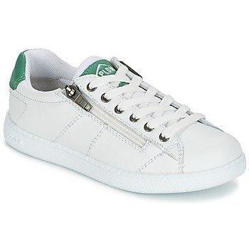 P-L-D-M by Palladium MALO CASH matalavartiset kengät