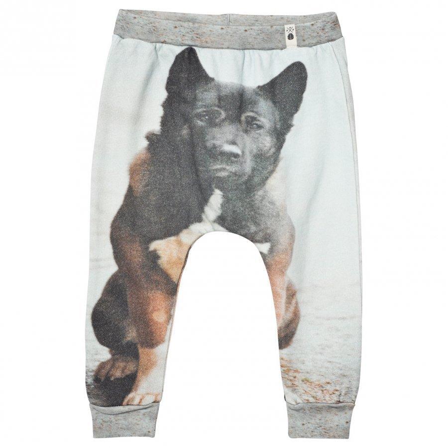 Popupshop Baggy Leggings Dog Verryttelyhousut