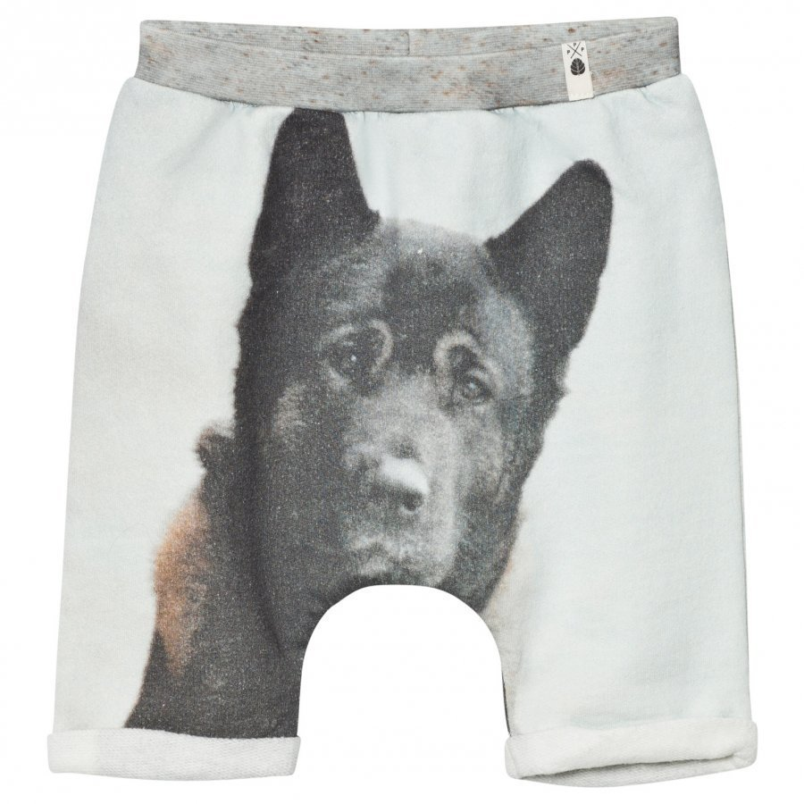Popupshop Baggy Shorts Dog Oloasun Shortsit
