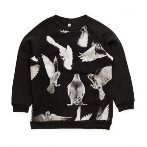 Popupshop Basic Sweat Black Birds