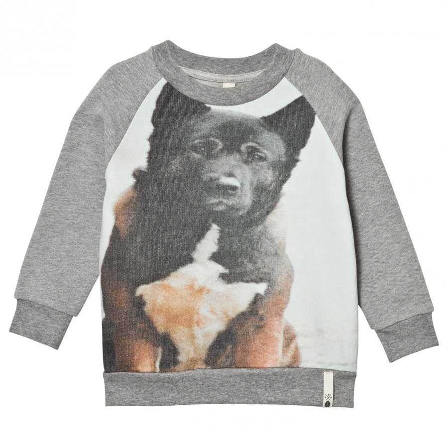 Popupshop Basic Sweat Dog Oloasun Paita