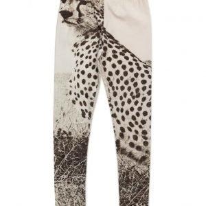 Popupshop Leggings Cheetah