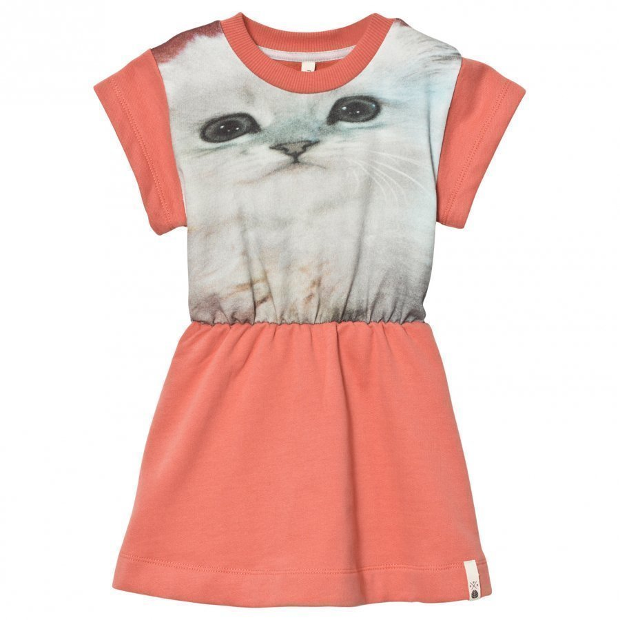 Popupshop Robbie Dress Fluffy Cat Mekko