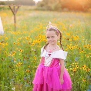 Prinsessa Ruususen Asu Pinkki
