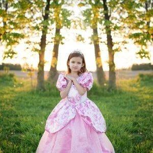 Prinsessan Asu Pinkki