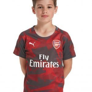 Puma Arsenal Fc 2017 Stadium Shirt Punainen