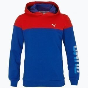 Puma Style Hooded Sweat Huppari