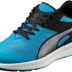 Puma Urheilujalkineet Ignite V2 Jr Blue