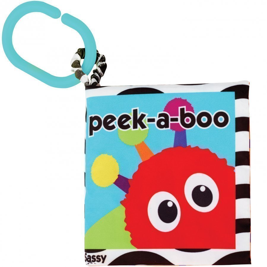 Sassy Peek-A-Boo Book Aktiviteettikirja