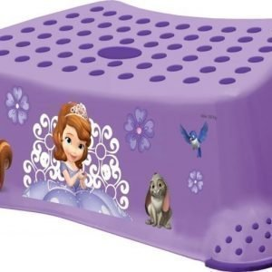 Sofia the First Kylpyhuonejakkara