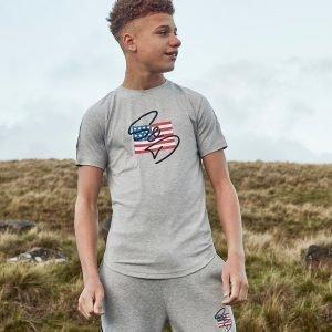 Supply & Demand Usa T-Shirt Harmaa