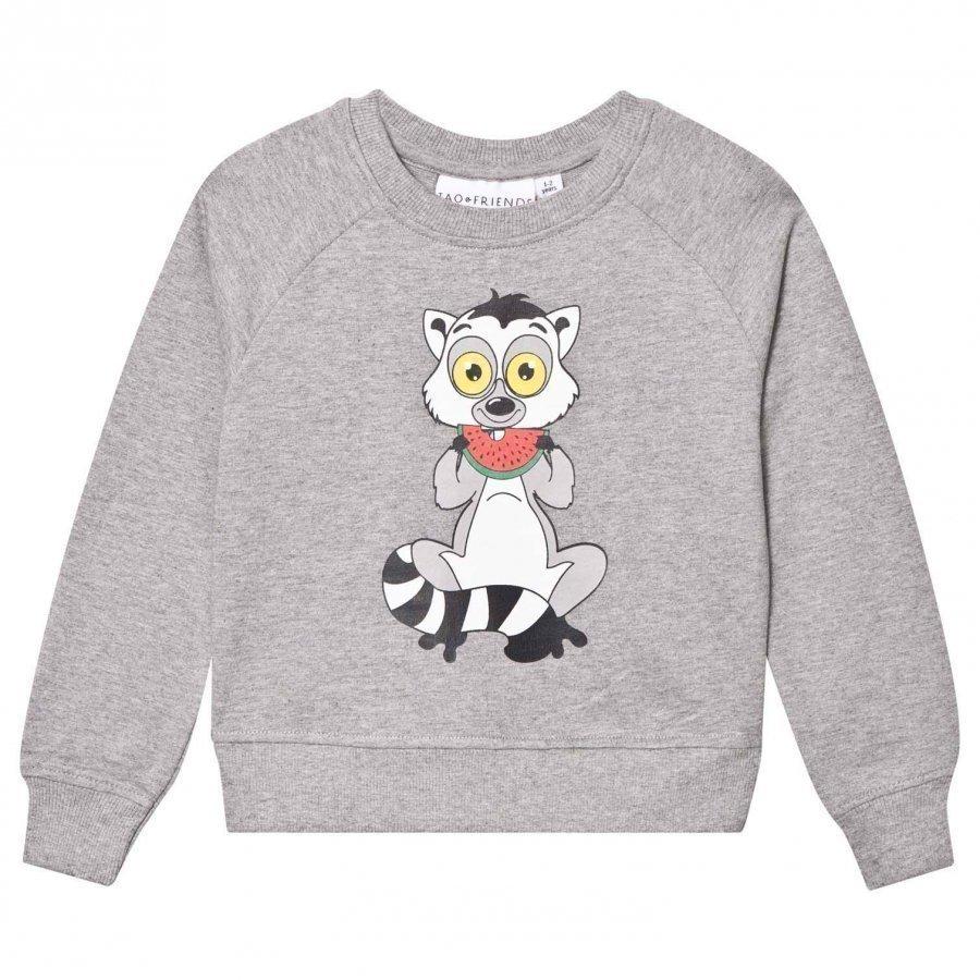 Tao & Friends Lemuren Sweatshirt Grey Oloasun Paita
