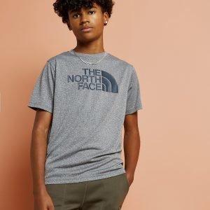 The North Face Easy T-Shirt Harmaa