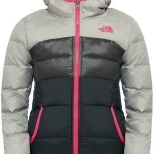 The North Face Talvitakki Moondoogy Silver