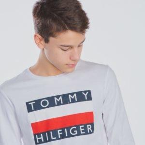Tommy Hilfiger Essential Hilfiger  Tee Longsleeve T-Paita Valkoinen