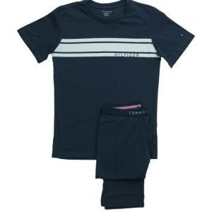 Tommy Hilfiger Icon Set Ss Print