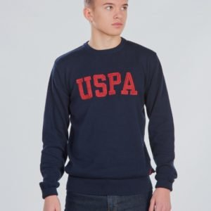 Us Polo Uspa True Knit Crew Neule Sininen