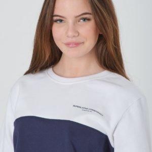 Wesc Block Sweatshirt Jr Neule Sininen