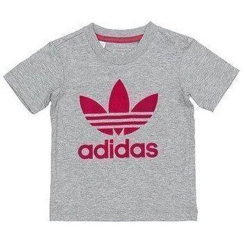 adidas urheilupuku lyhythihainen t-paita