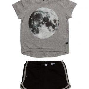 molo Luna